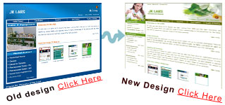 website redesigner india